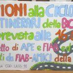 cartelli5